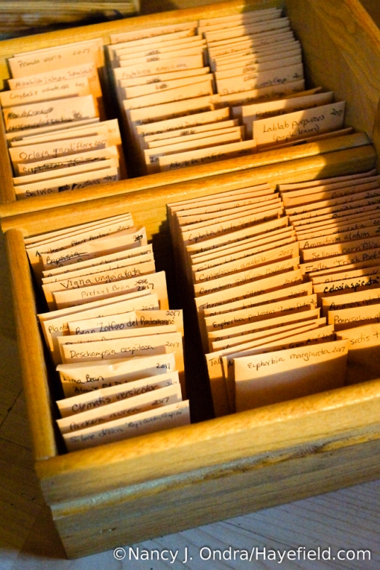 Who wouldn't feel rich with their own little seed library? Hoarding these treasures is fun; sharing them is even more fun. [Nancy J. Ondra/Hayefield.com]